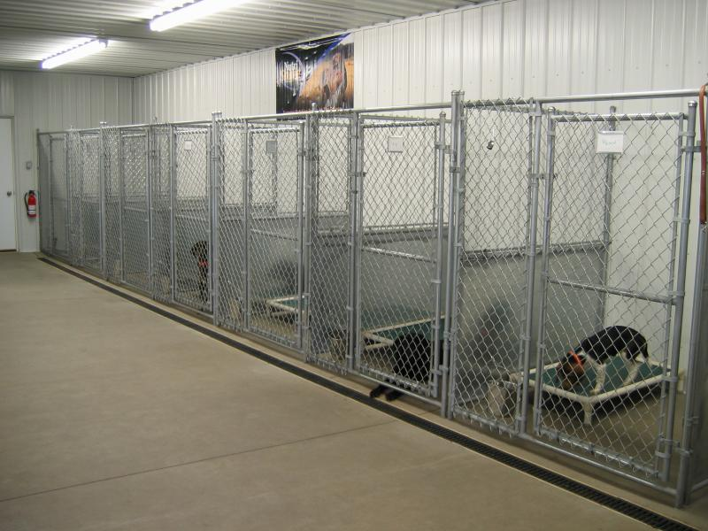 Marquette fence co inc dog kennels for Indoor outdoor dog kennel design